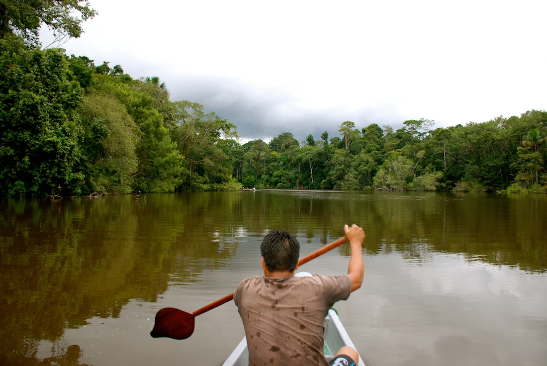 Luxury In The Amazon Jungle In Ecuador