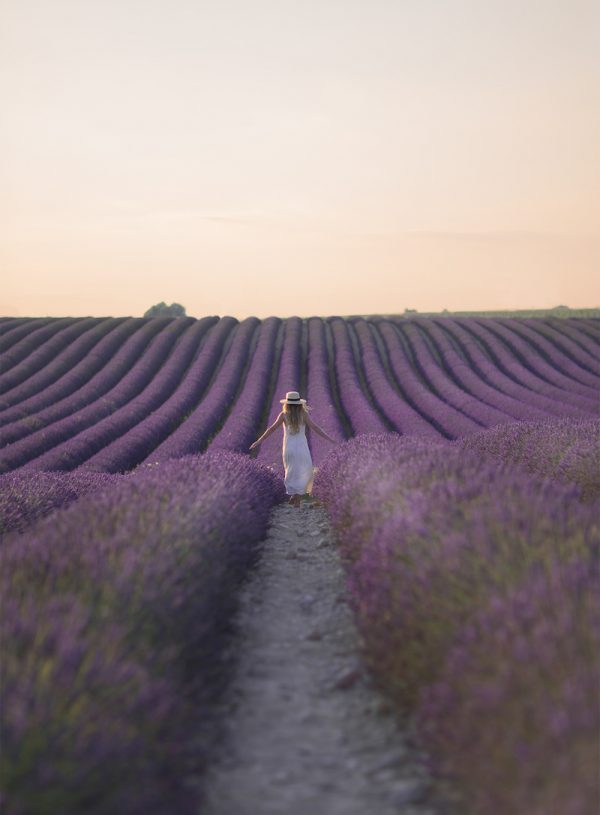 18 Photos To Inspire You To Visit Valensole, France