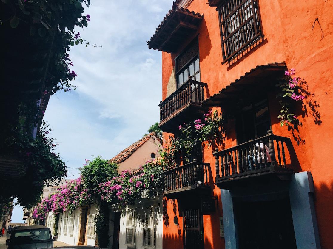 Cartagena-flowers