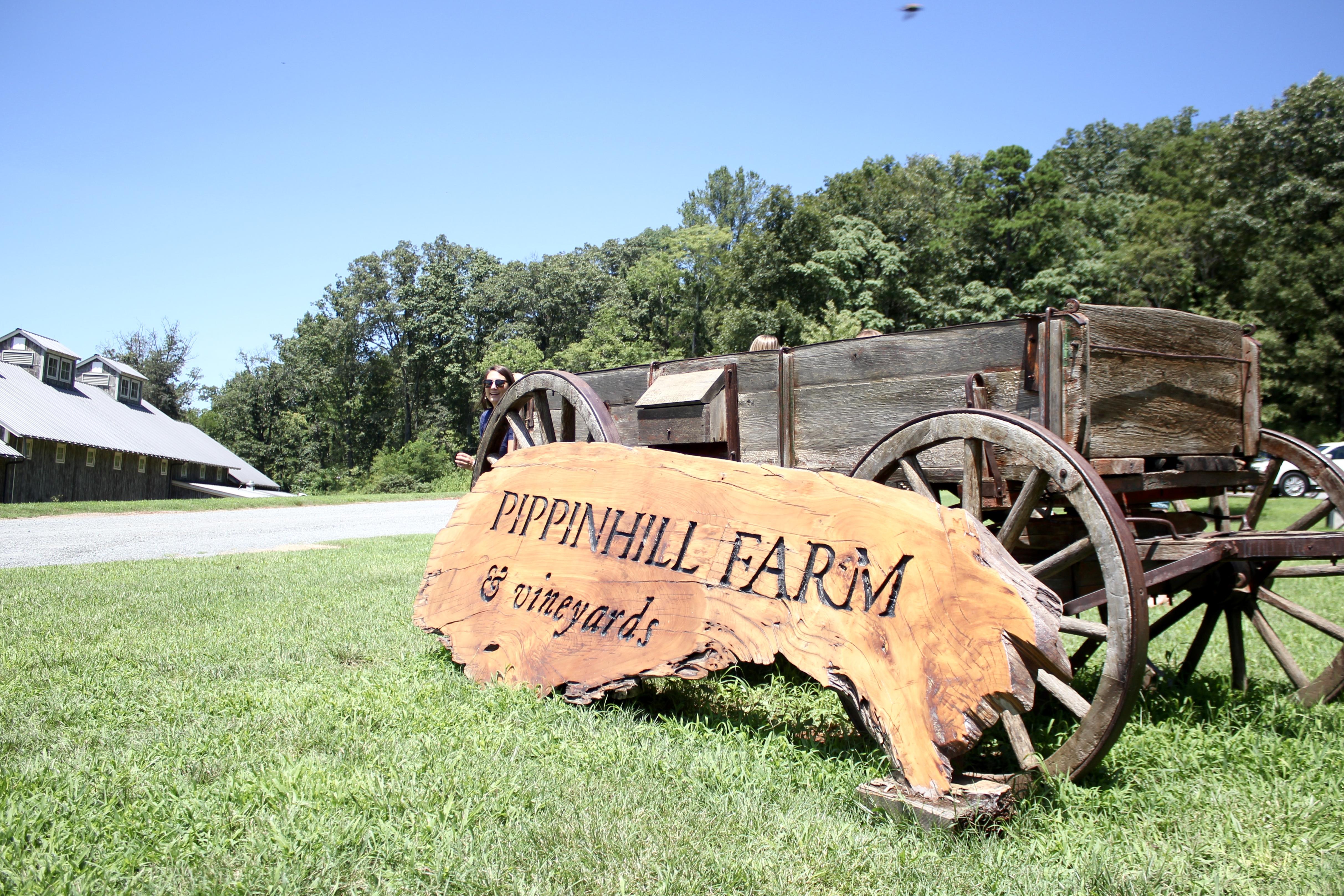 PIPPIN-HILL-VIRGINIA