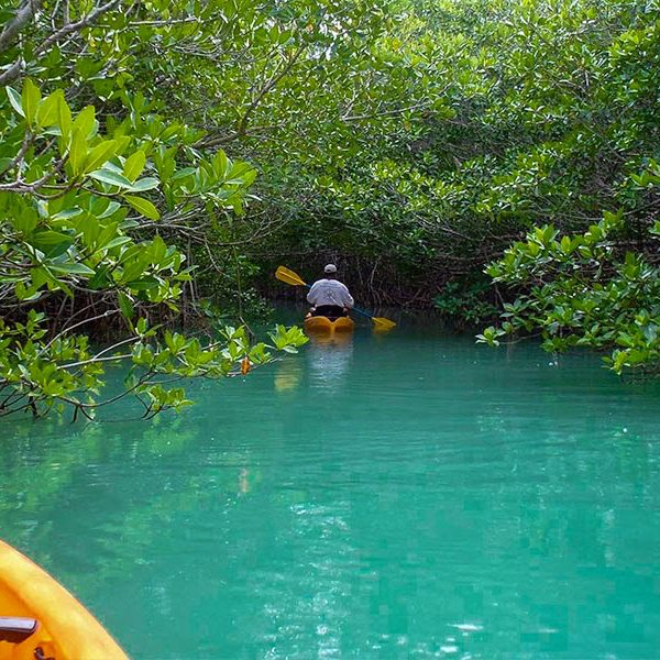 5 FANTASTIC FLORIDA KAYAK ESCAPES
