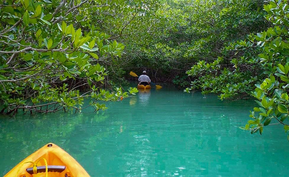 5 Fantastic Florida Kayak Escapes We Are Travel Girls