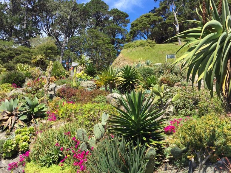 botanic-gardens-wellington