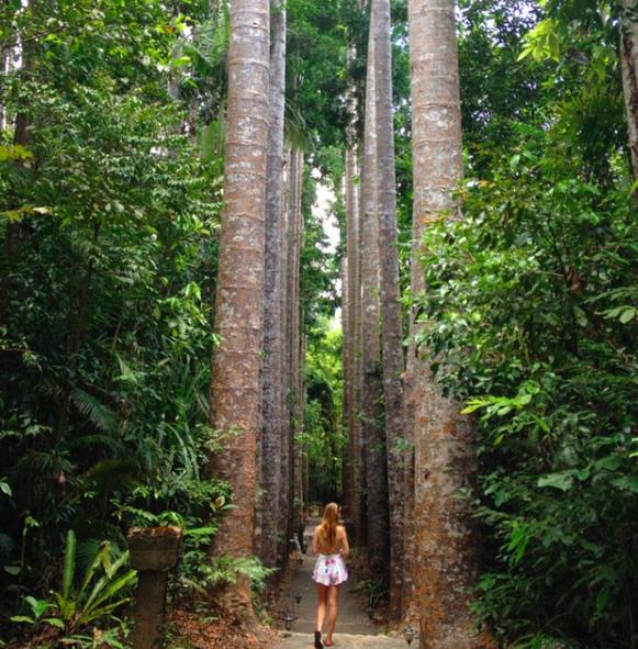 Cairns-Paronella-Park-2