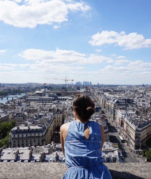 Paris Rooftop Views