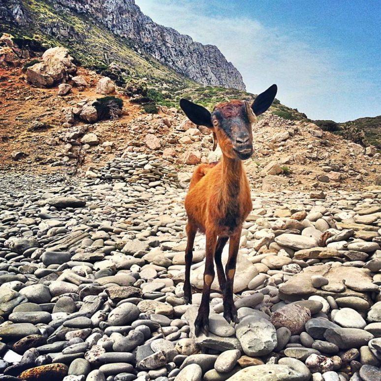 Mallorca: An adventure guide to Port De Pollensa