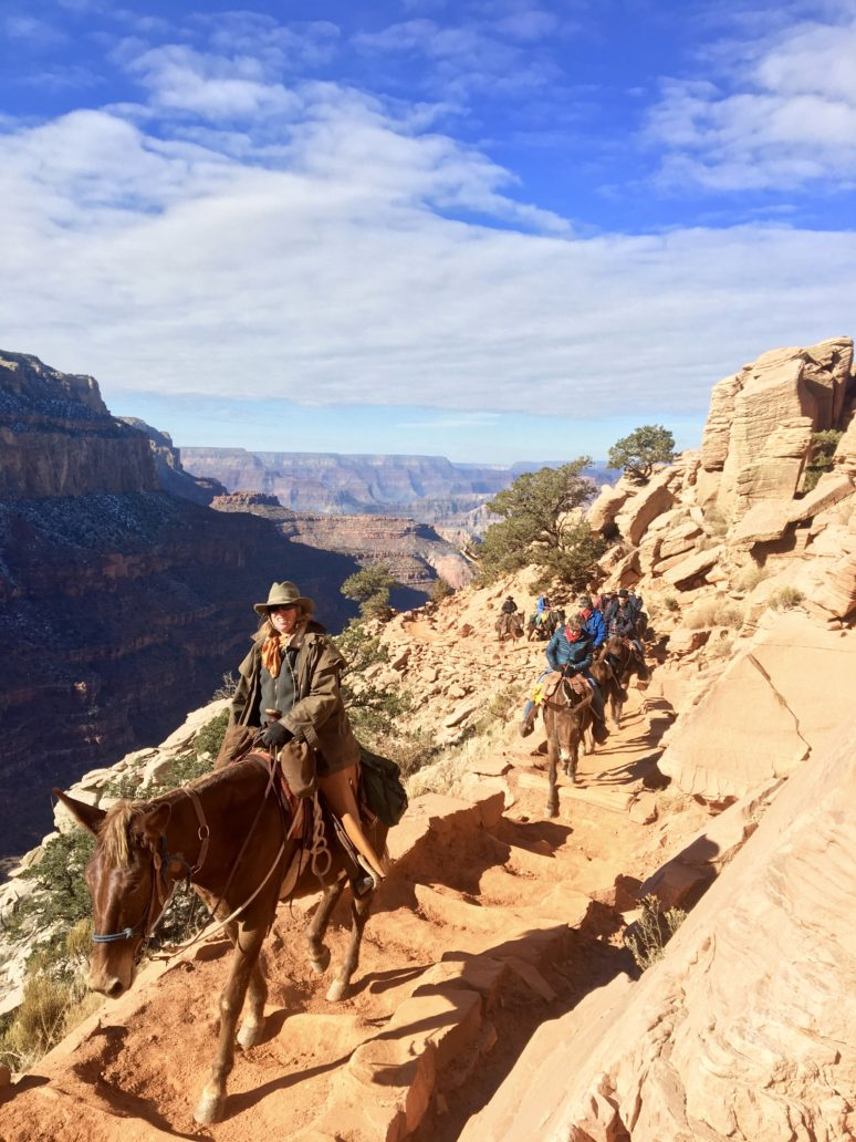 HORSESHOE BEND, ANTELOPE CANYON, AND THE GRAND CANYON: A PHOTOGRAPHERS DREAM mules