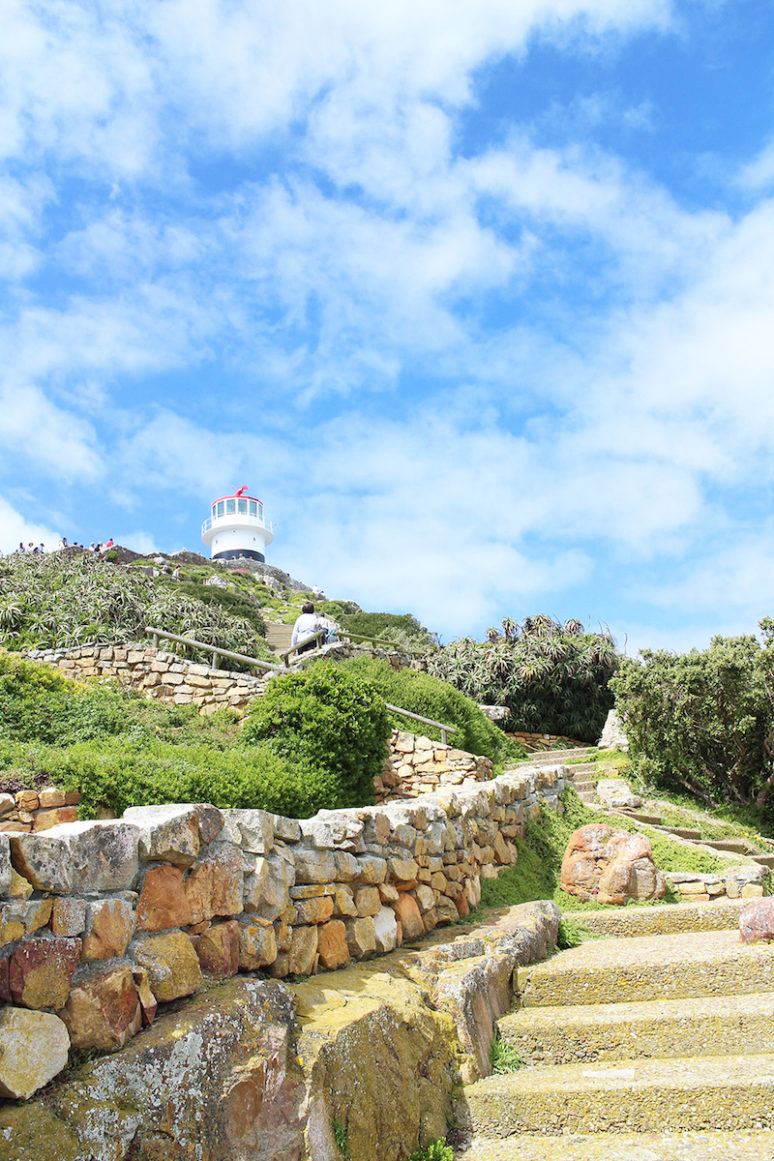 lighthouse-capetown