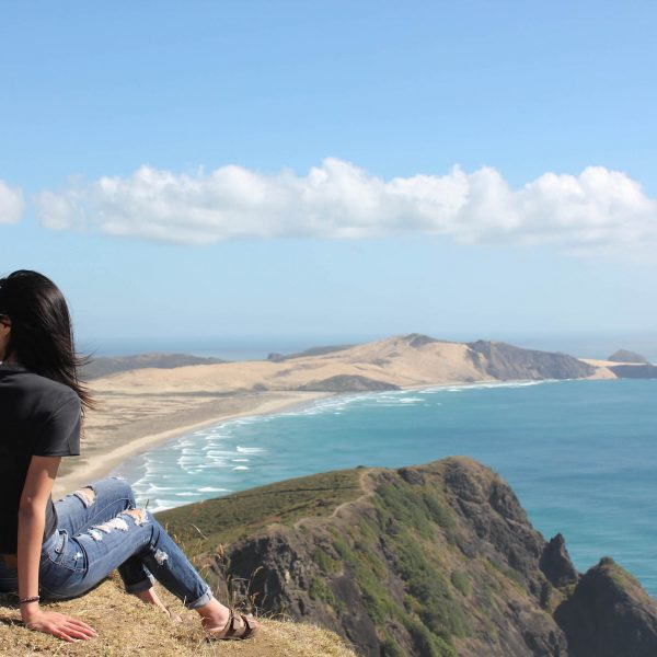 A GUIDE TO ROAD TRIPPING AROUND THE NORTH ISLAND, NEW ZEALAND