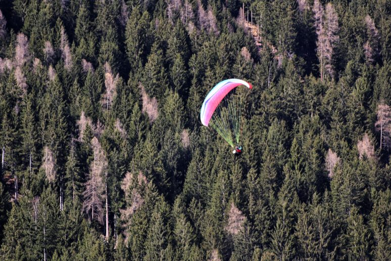 FLYING THROUGH THE ALPS PARAGLIDING IN AUSTRIA trees view