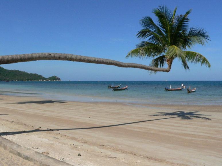 6 MUST SEE SPOTS IN KOH TAO, THAILAND sai-ree-beach