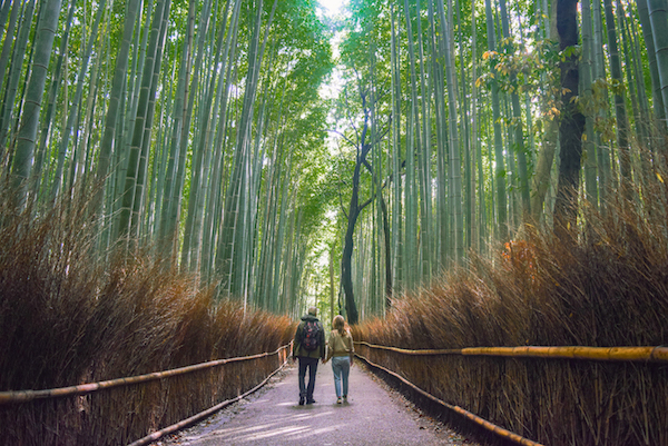 6 Fun Amp Free Things To Do In Kyoto We Are Travel Girls