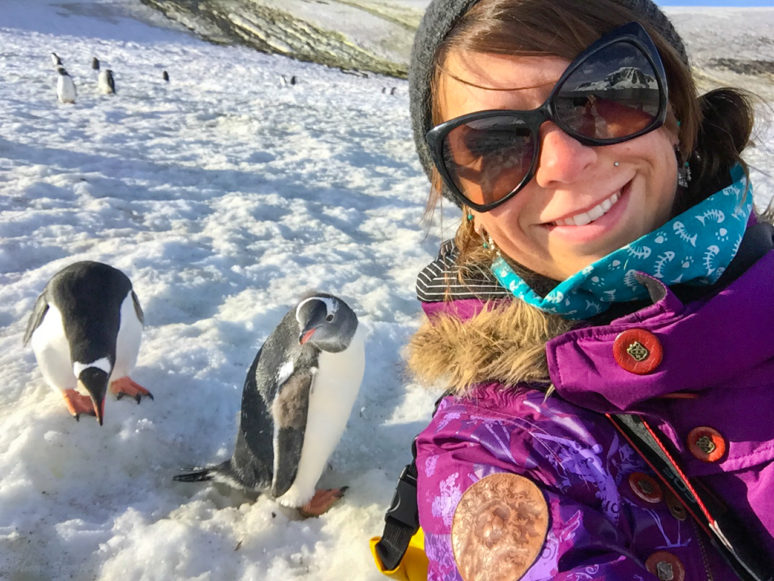 Traveling Solo In Antarctica