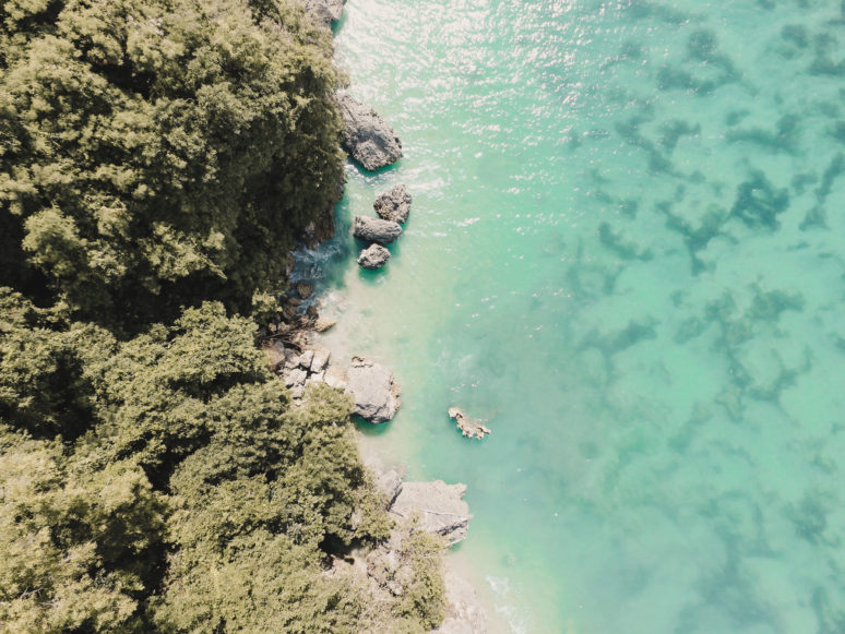 TROPICAL DESTINATIONS YOU MUST VISIT IN 2019 BALI