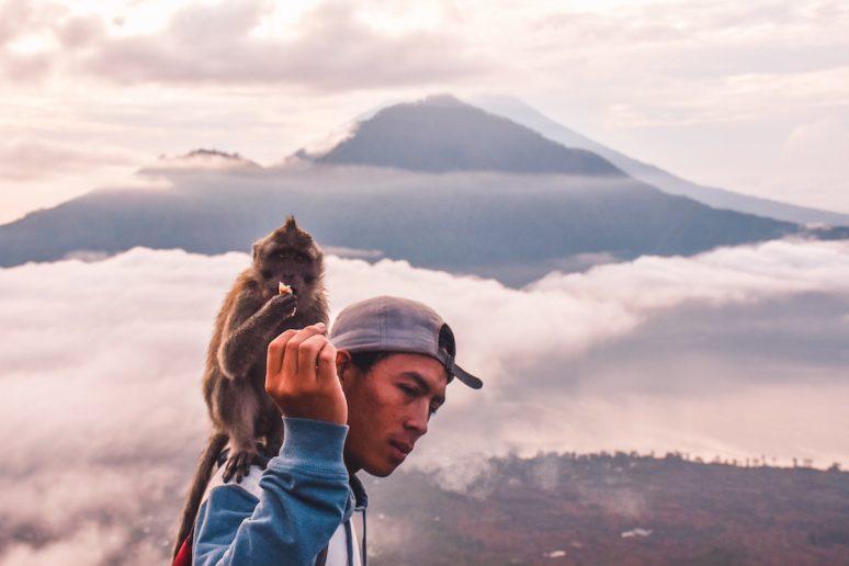 Mount Batur Trekking Guide with Monkey on Shoulder