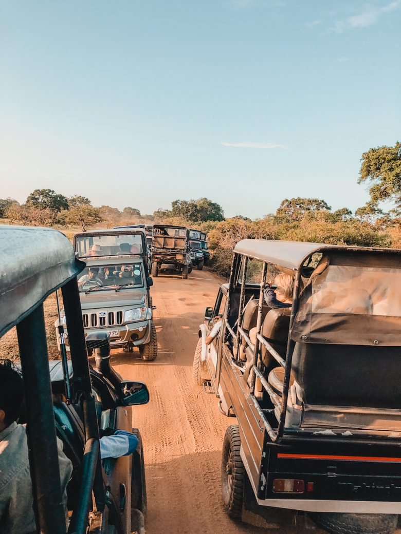 Yala National Park Jeeps