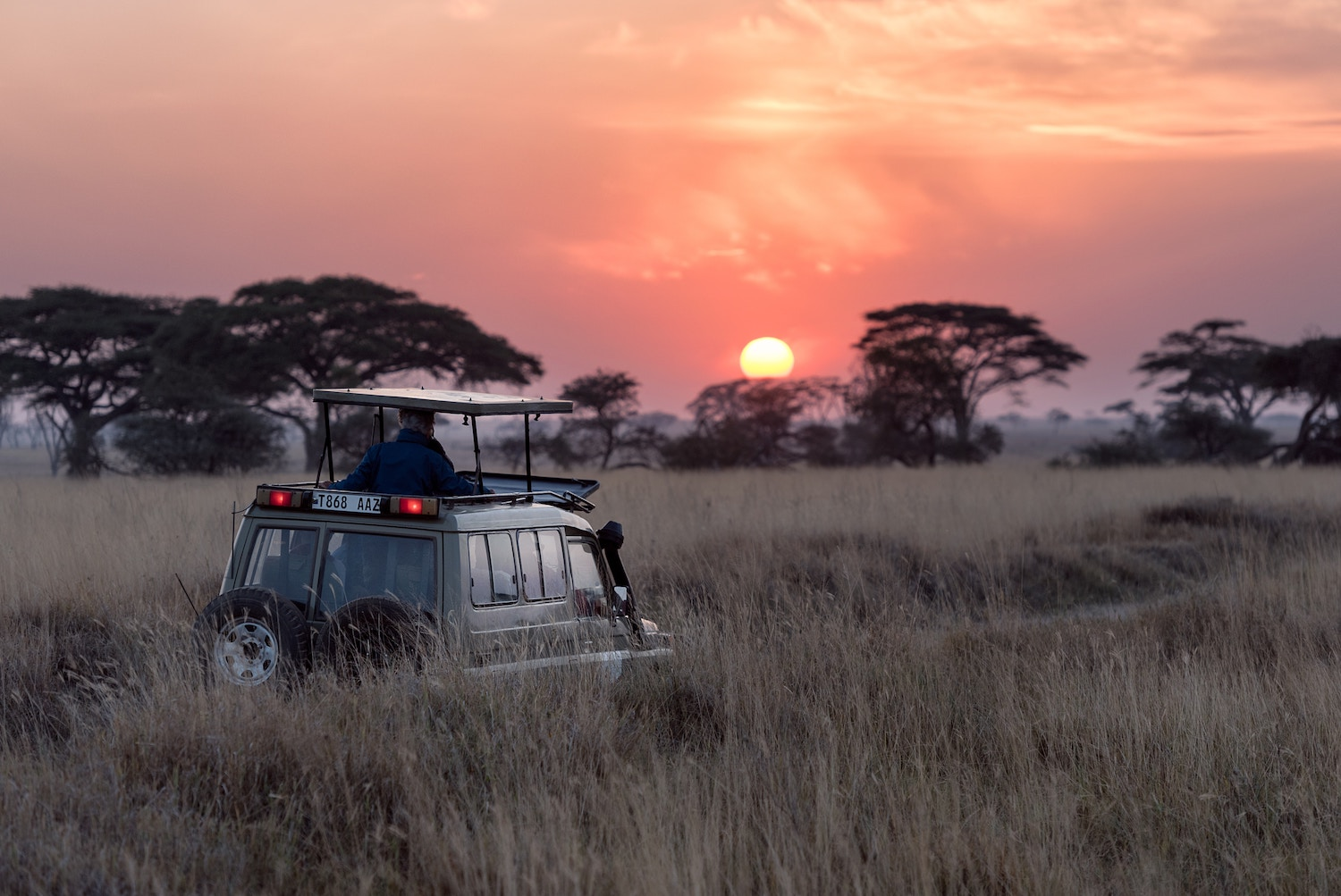 Road Trip To Africa