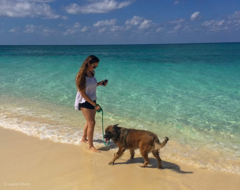 12 THINGS NOT TO MISS IN GRAND CAYMAN
