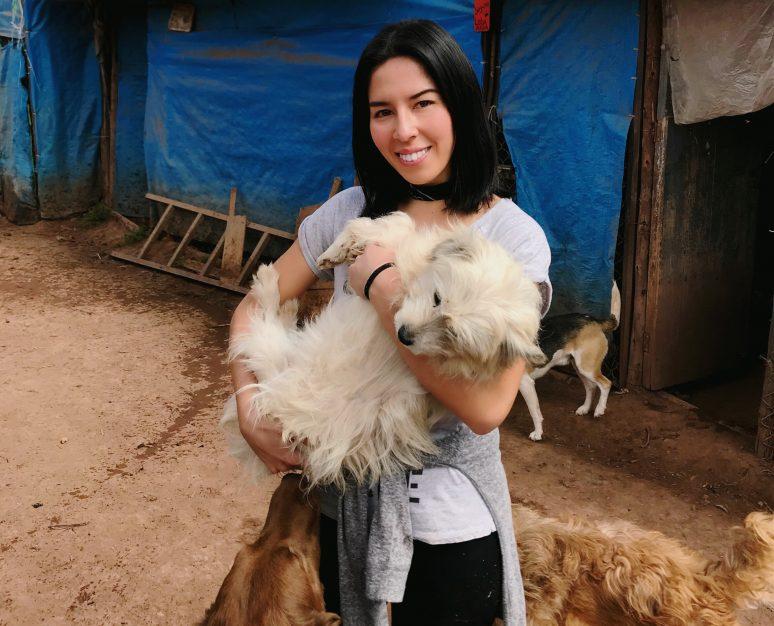 VOLUNTEERING AT SOY CALLEJERITO ANIMAL SHELTER, PERU