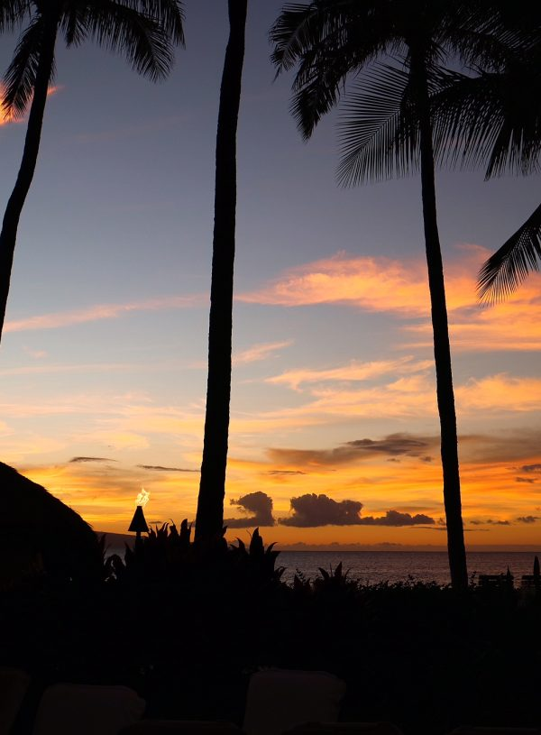 8 Instagrammable Spots on Maui