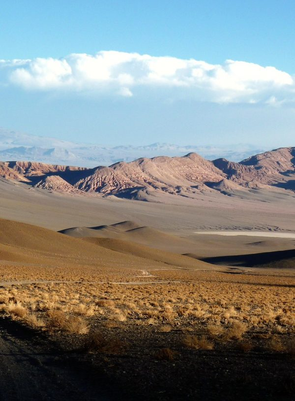 5 Must-do's for Solo Travelers in Atacama, Chile