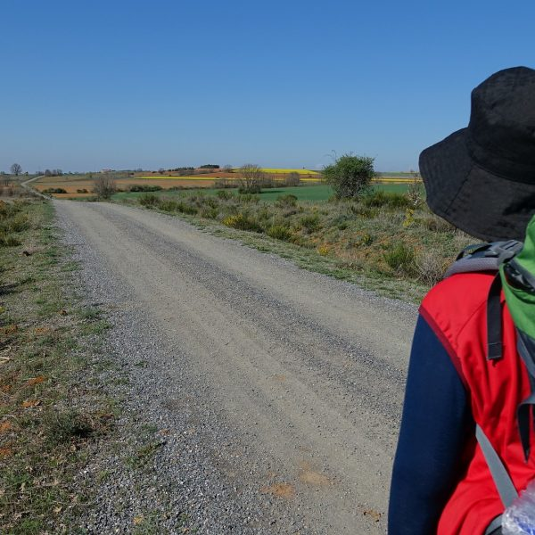 Why Walking The Camino De Santiago Is Everything You Didn't Know You Needed
