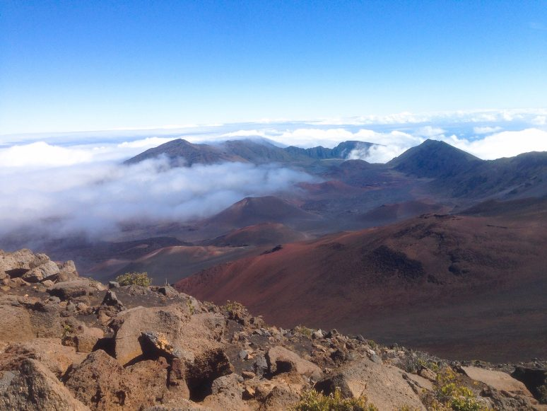 8 Things Not To Miss In Maui