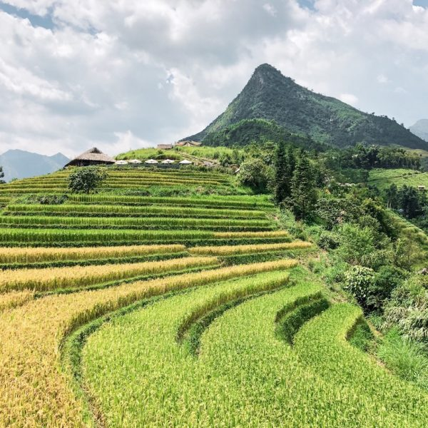 5 Of Vietnam's Most Instaworthy Spots