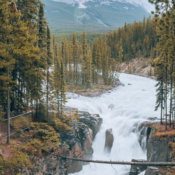 5 Reasons To Visit Jasper National Park