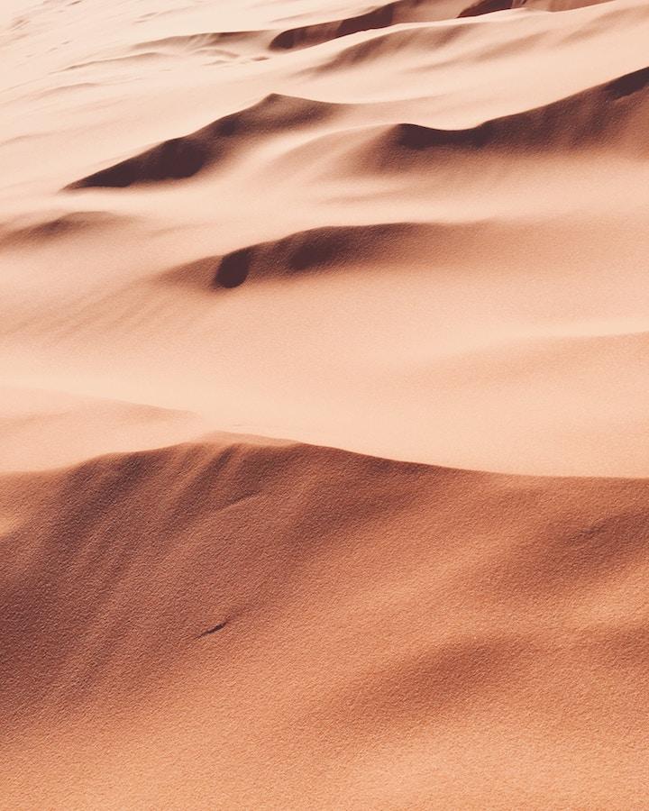 Poland Sand Dunes