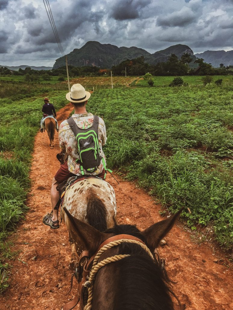 Vinales, Cuba: Exploring The Tabacco Plantations