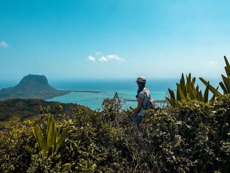 ebony-forest-mauritius