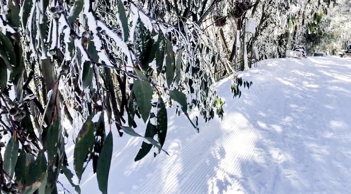 Ski, Snow And Fun In The Australian Alps Sun