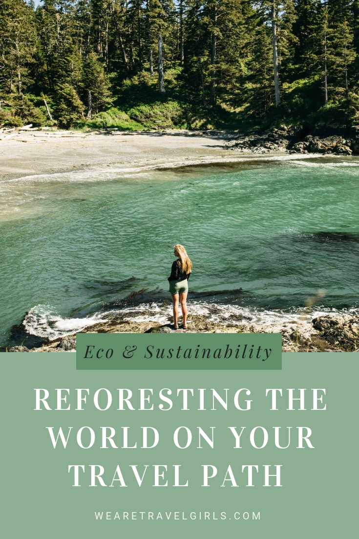 Reforesting the World on Your Travel Path