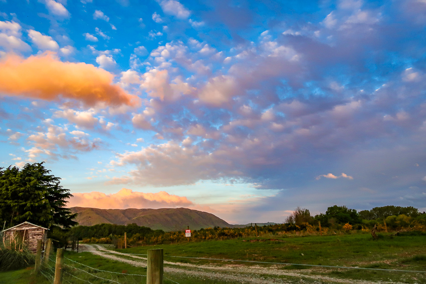 Guide To Road Tripping New Zealand's South Island