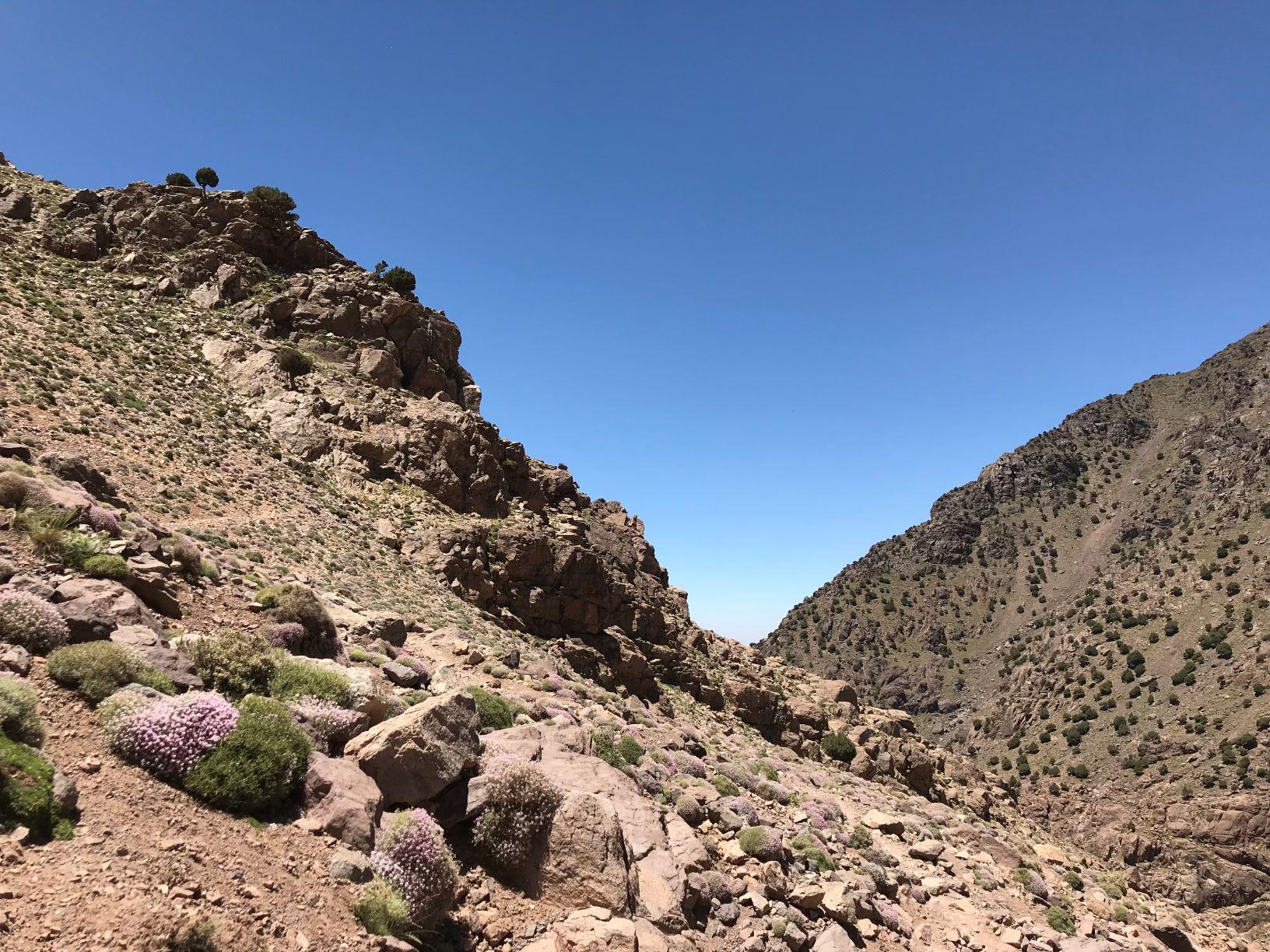 Hiking Mount Toubkal, Morocco's Highest Mountain