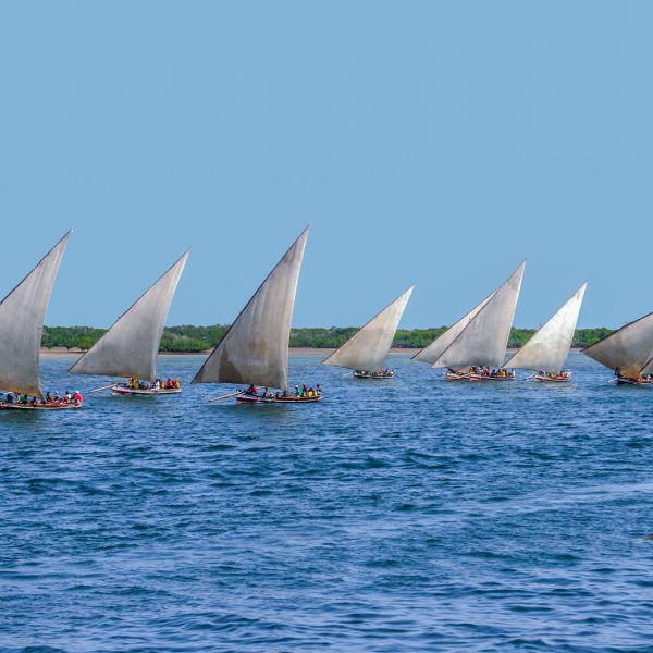 Top 6 Things To Do In Lamu Island, Kenya