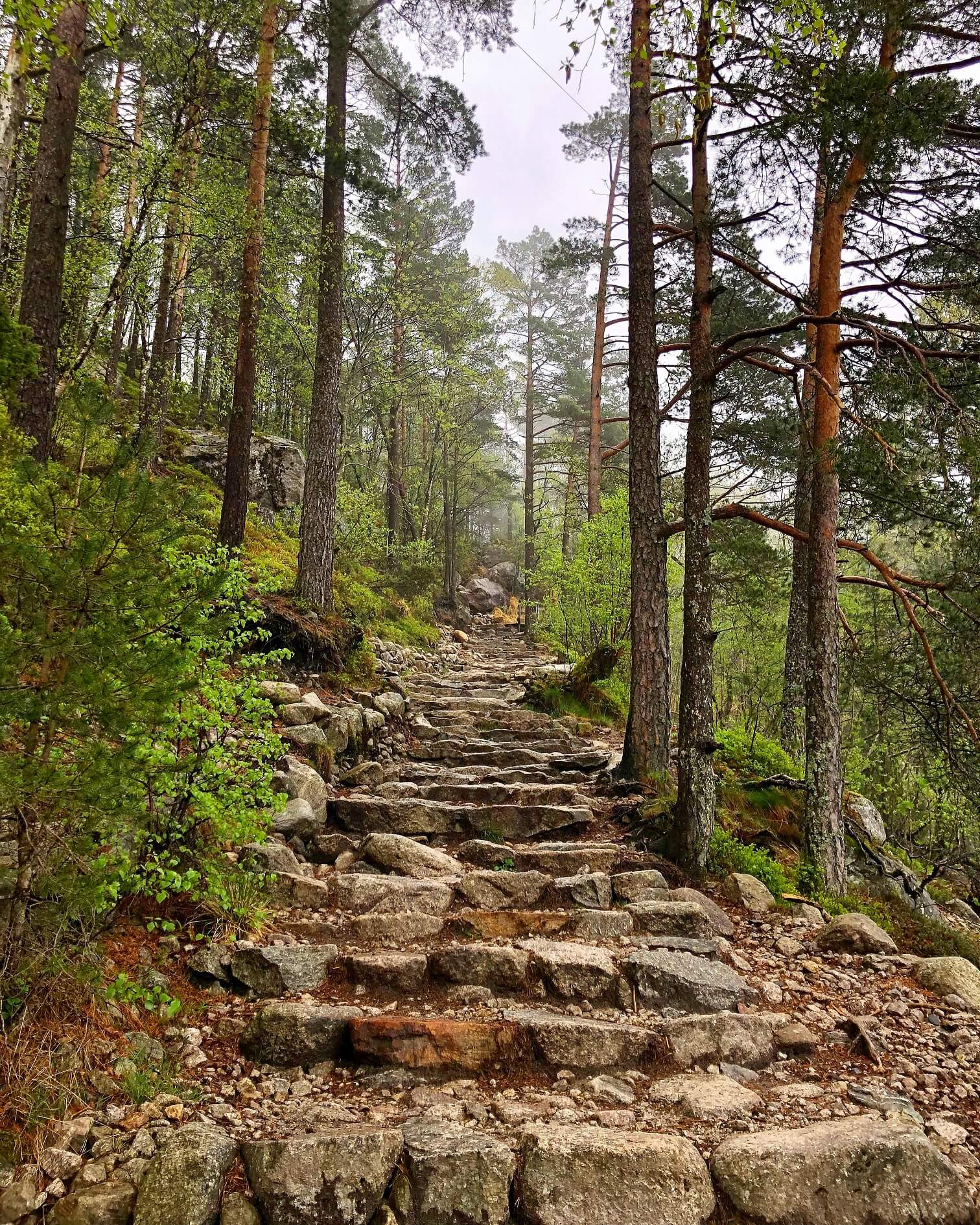 Norway: Guide to hiking Preikestolen (Pulpit Rock) in bad weather