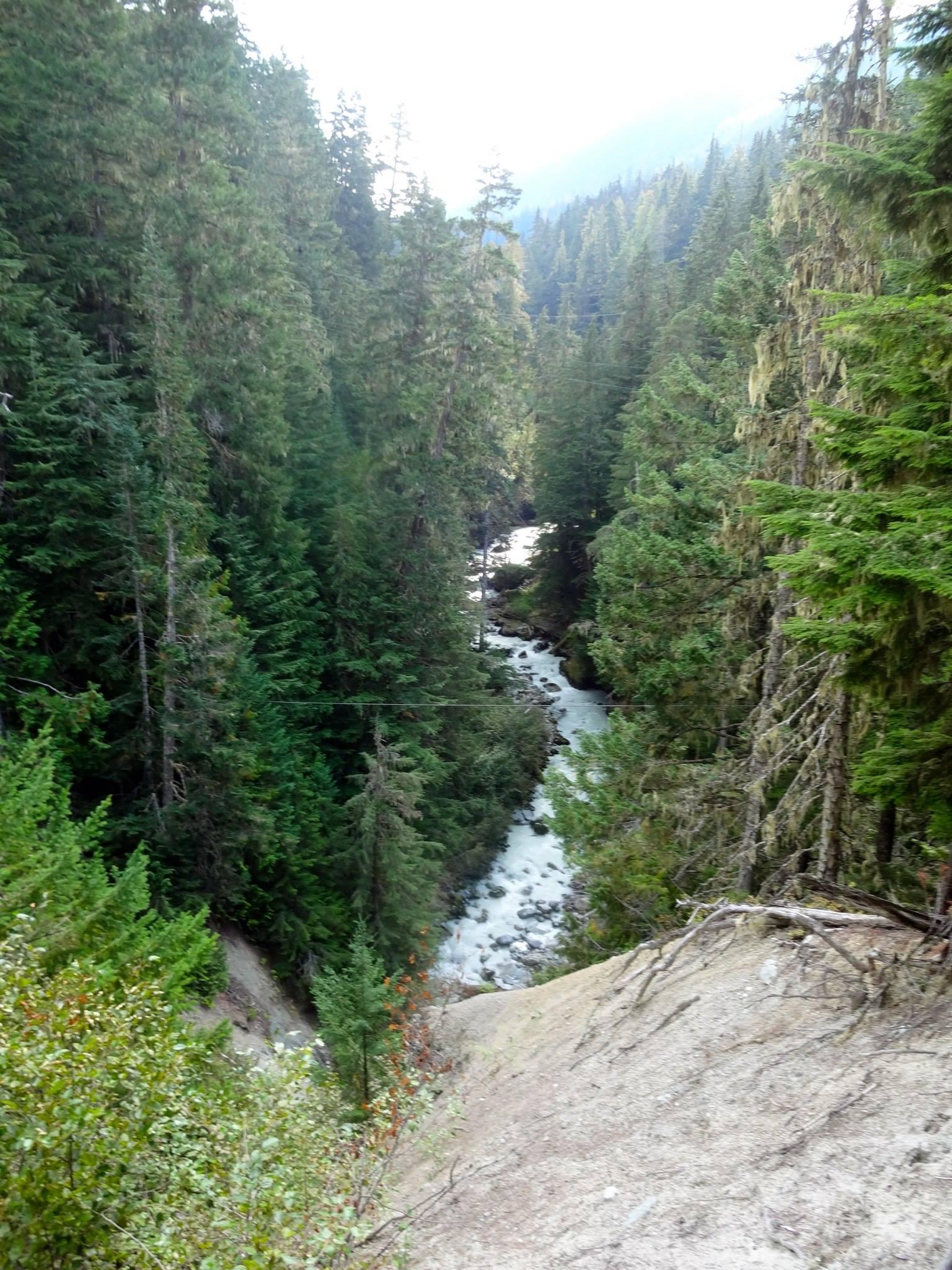 River through forest from suspension bridge