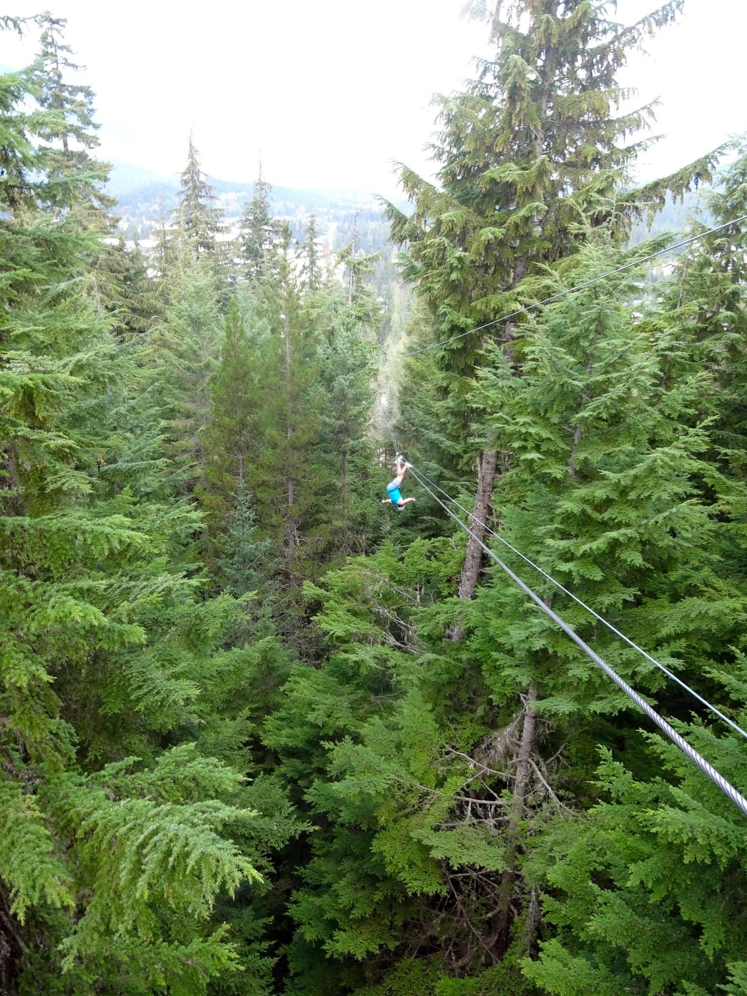 Person on zipline over trees