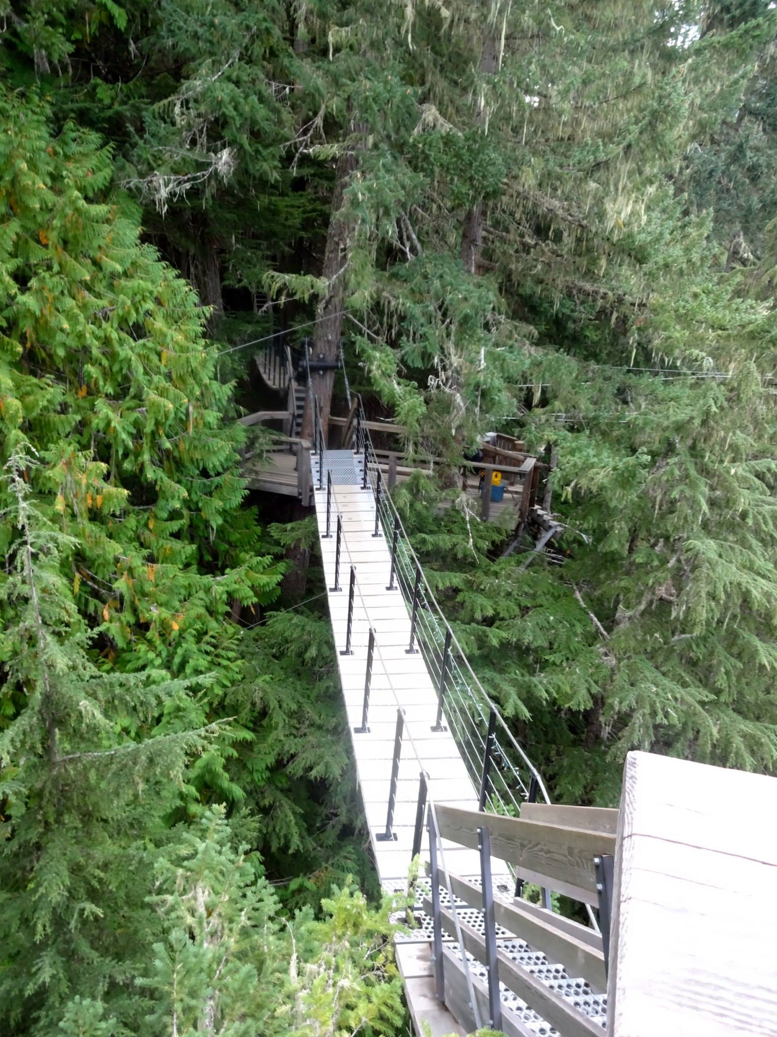 Zipline platform at Whistler Village