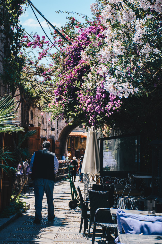 Street and flowers in Lebanon