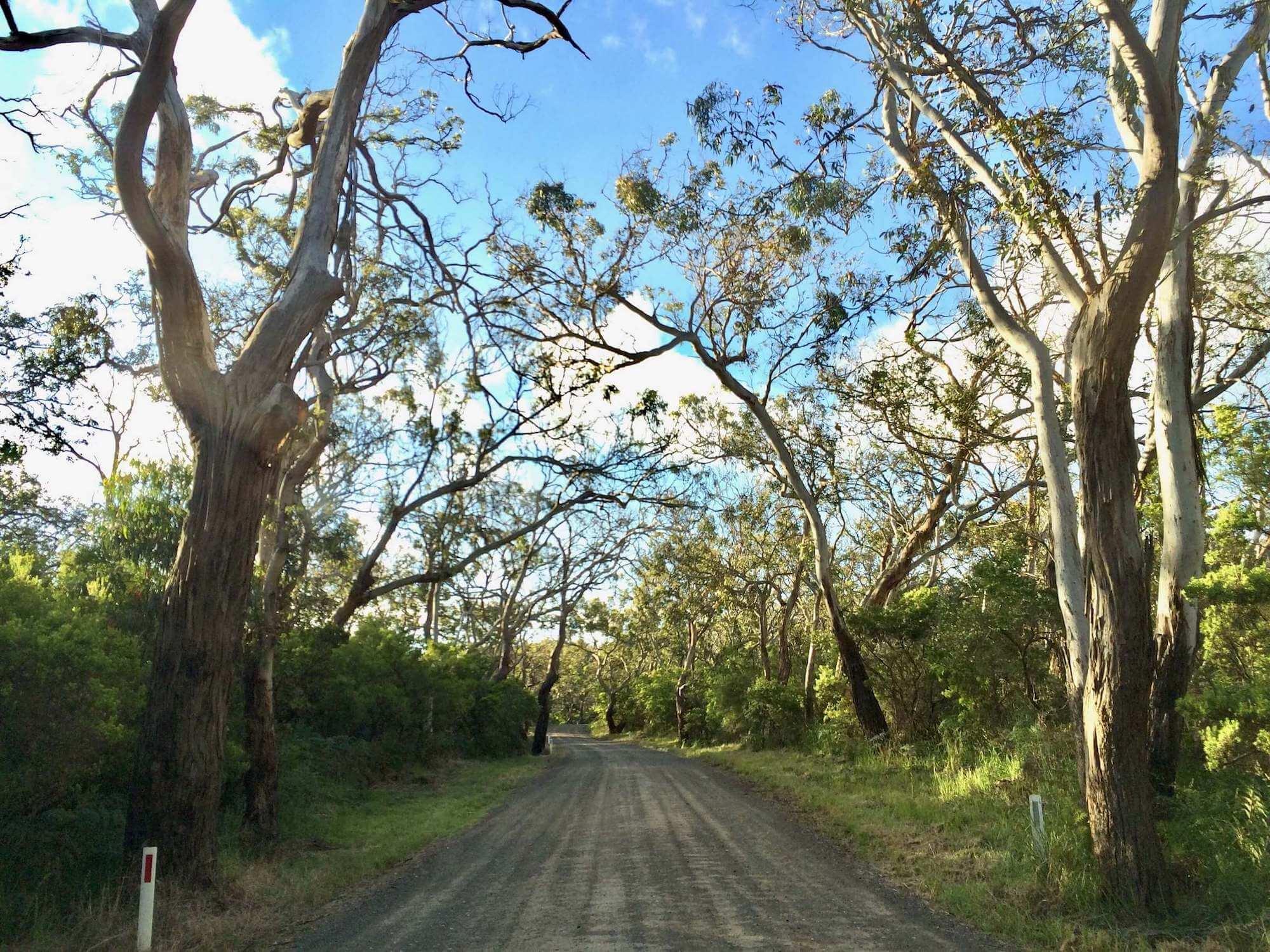 Entrance to Bimbi Park, Australia