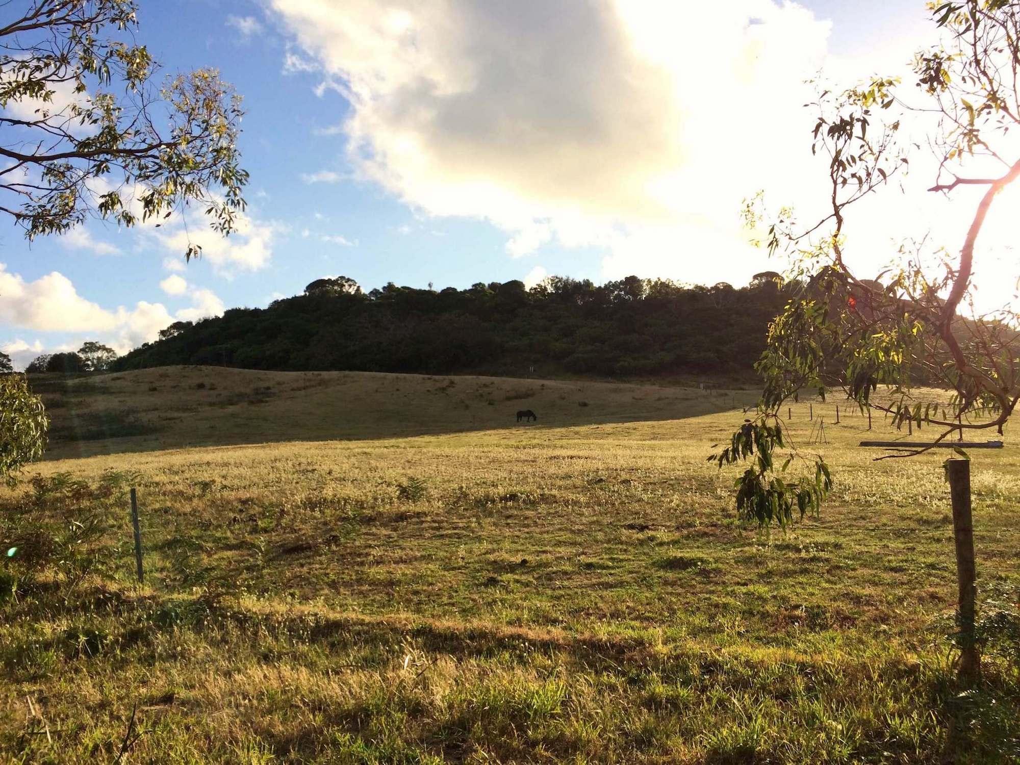 Bimbi Park Australia