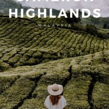 12 things to do in the cameron highlands (2)
