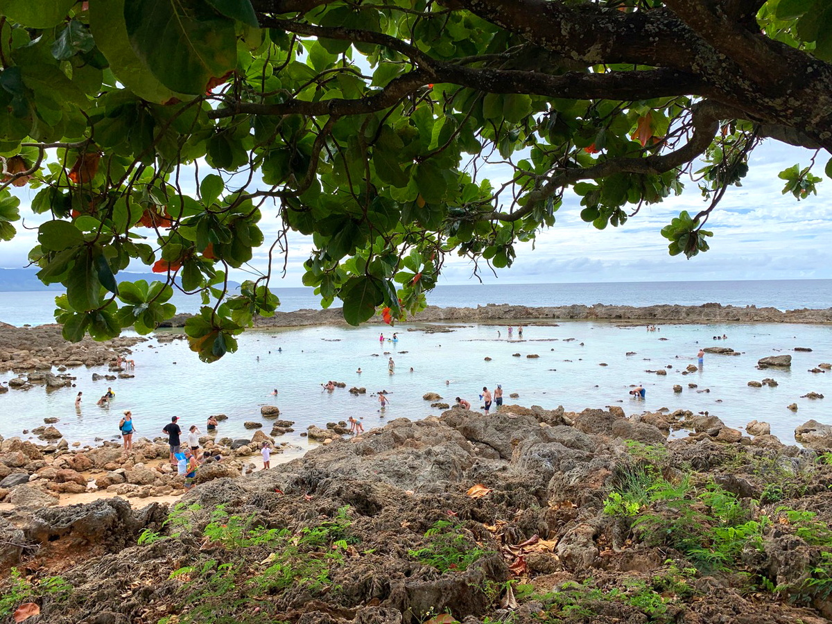 view of the beach in north shore